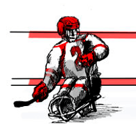 sledge-hockey-infos